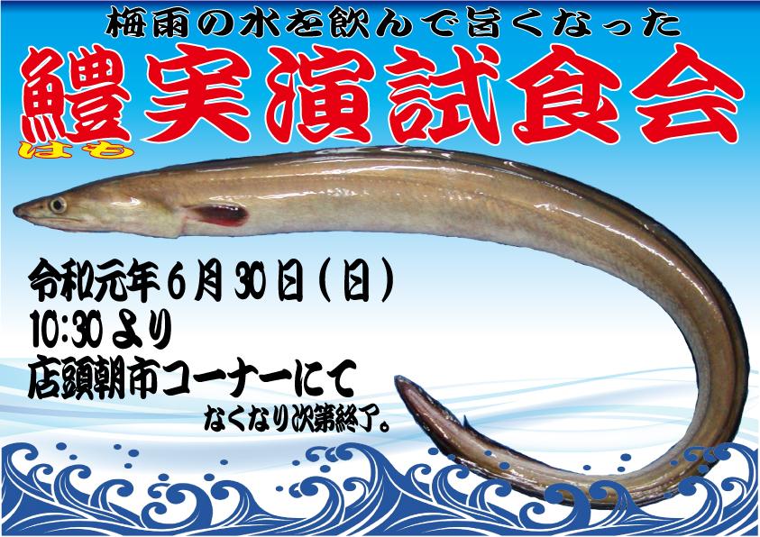 ハモの実演試食会のお知らせ!!